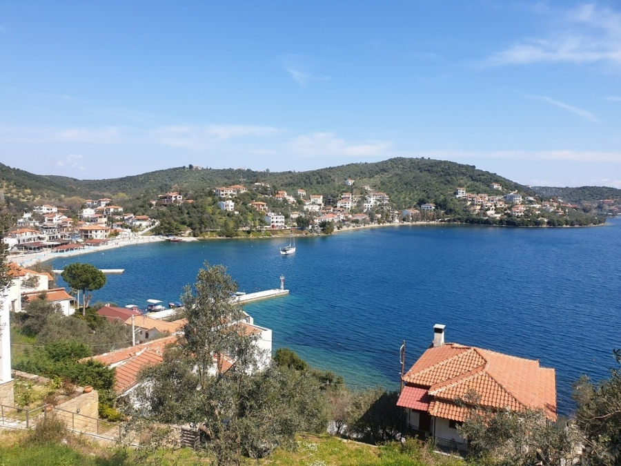 For Sale Agricultural Land 4036 sq.m. Pteleos – Agia Marina