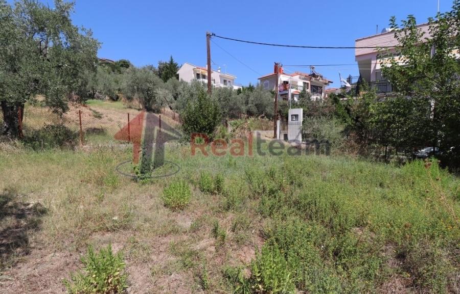 For Sale Detached house 158 sq.m. Pteleos – Achilleio