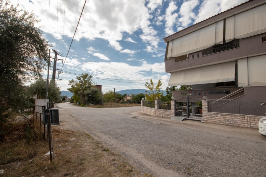 For Sale Agricultural Land 3076.98 sq.m. Sporades-Skopelos – Glossa