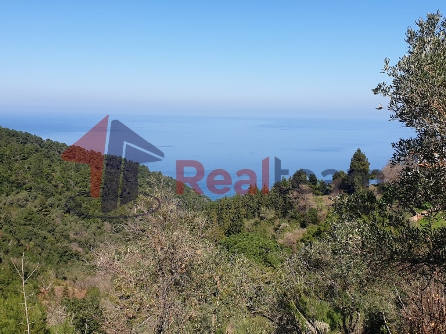 For Sale Agricultural Land 4660 sq.m. Sporades-Skopelos – Glossa